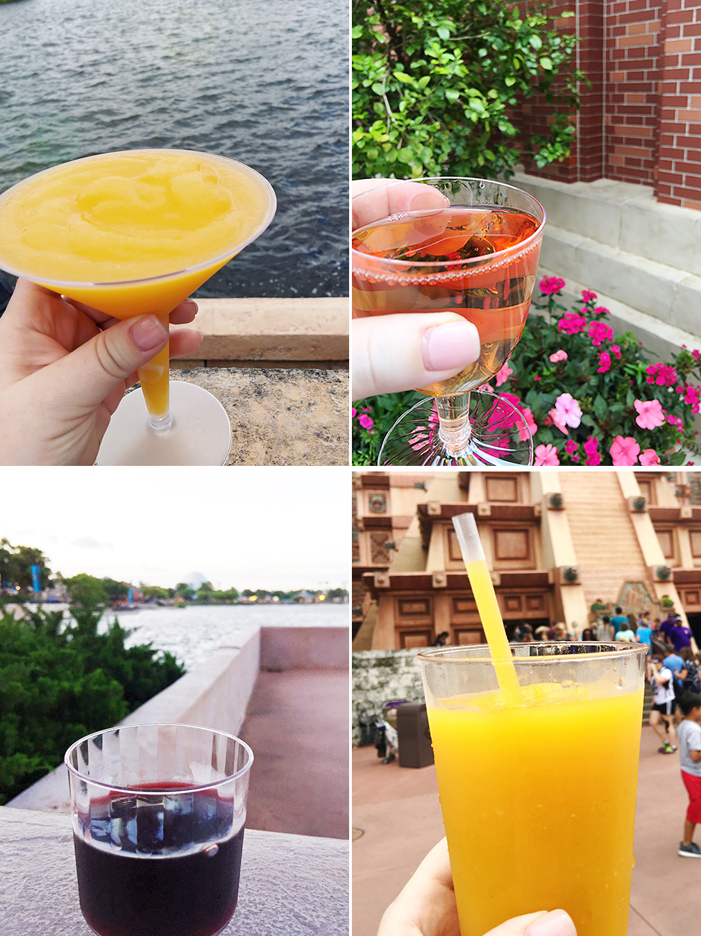 Epcot Top Drinks