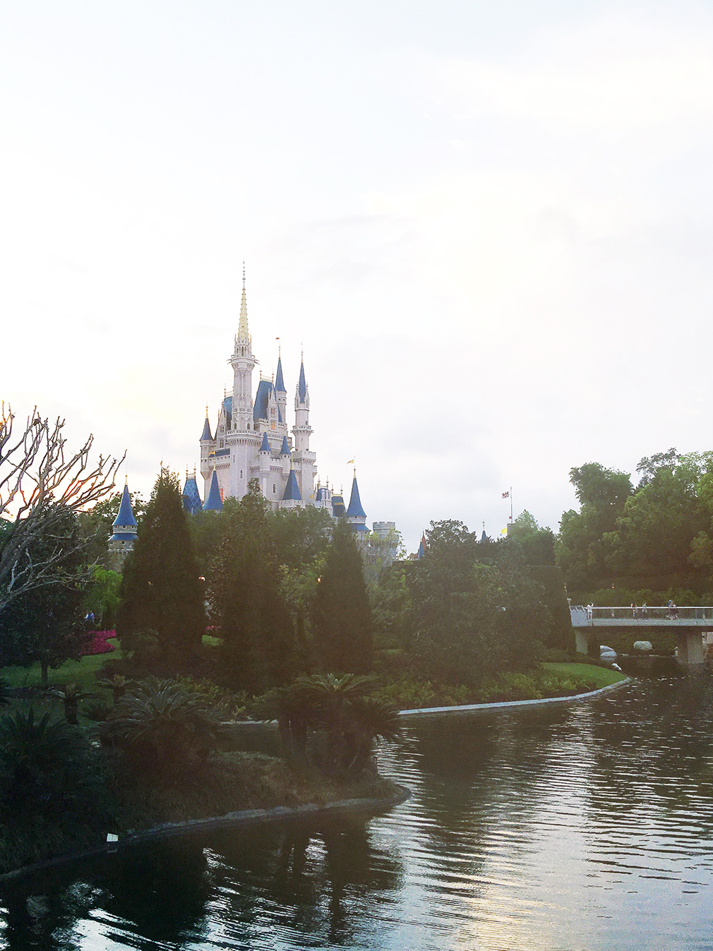 Magic Kingdom 4